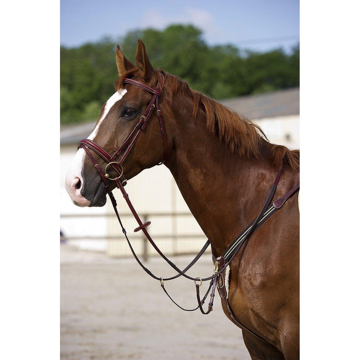 Afbeelding van After Riding Hoofdstel Polo Havana/Beige Cob