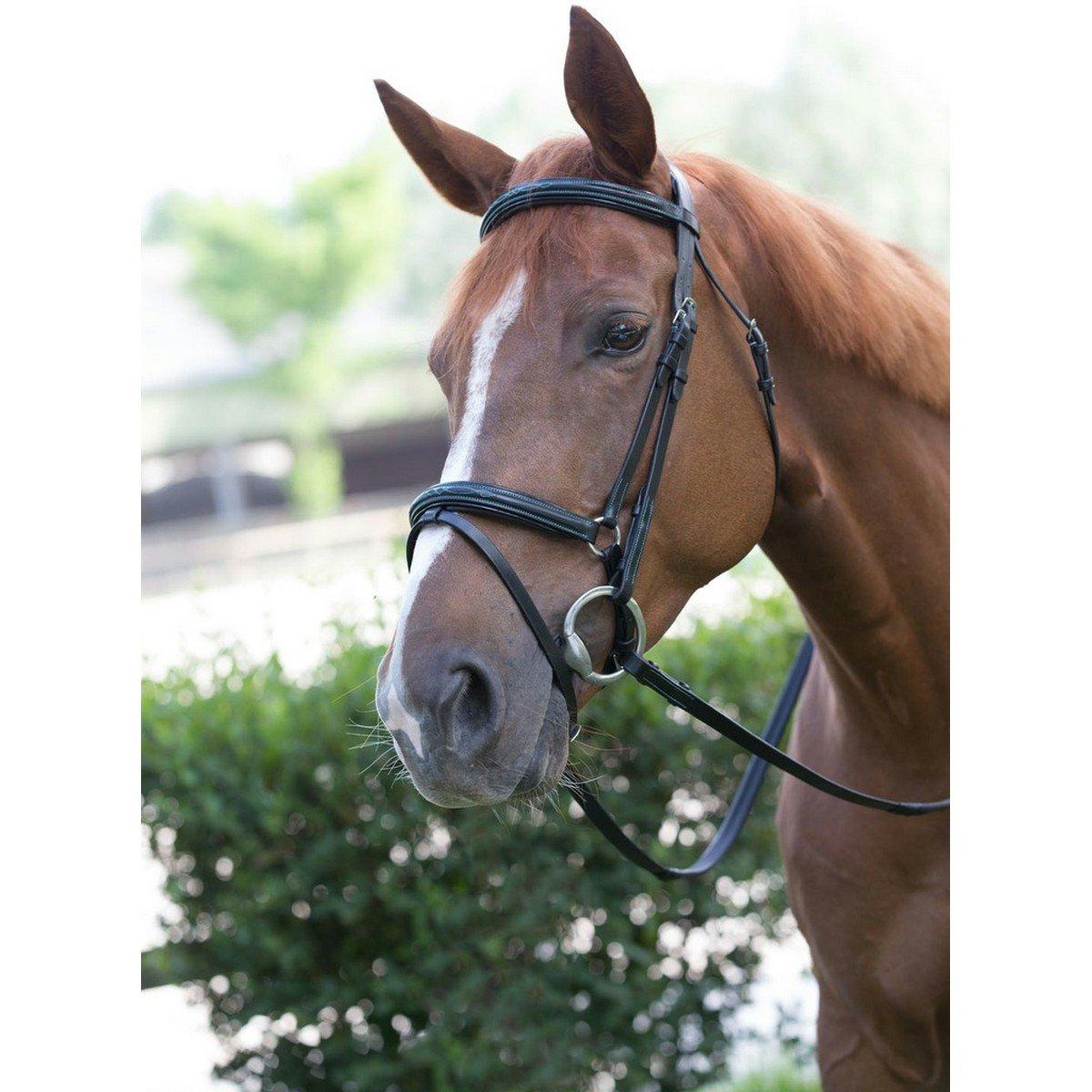 Afbeelding van After Riding Hoofdstel Polo Fancy Zwart/Magenta Cob
