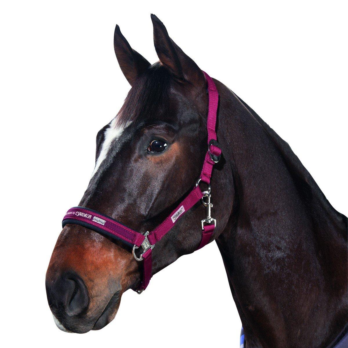 Afbeelding van Eskadron Halster Classic Sports Bordeaux Pony