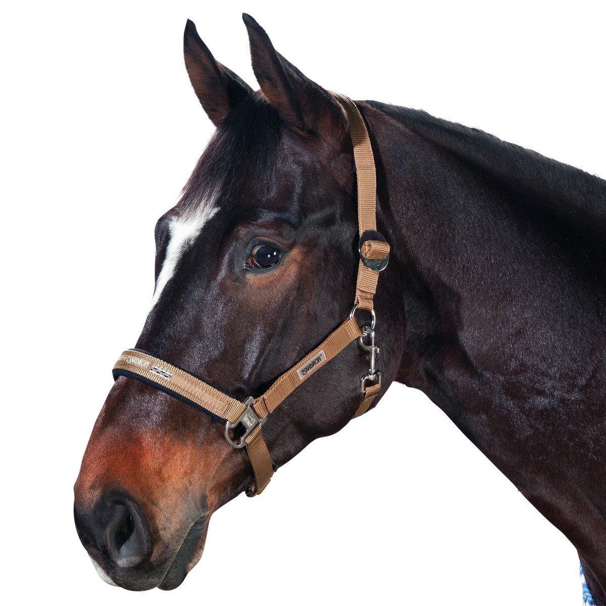 Afbeelding van Eskadron Halster Classic Sports Cognac Pony
