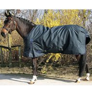 Harrys Horse Thor 200 Grams Ebony