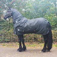 Harrys Horse Winter Rug Thor 400g with Neck Stretch limo