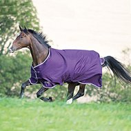 Tempest Plus by Shires Outdoordeken 200 Purple/White