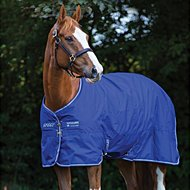 Amigo Turnout Lite Pony Hero 900 0g Atlantic Blue/AB Ivory