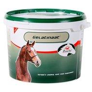 PrimeVal Gelatinaat Paard 5kg