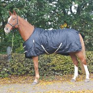 Pfiff Turnout Rug Black