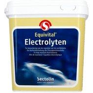 Sectolin Electrolyten