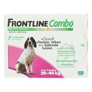 Frontline Combo Spot-On Hond 20-40kg L 3pip
