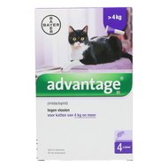 Advantage 80 Spot-on Katze 4-8kg 4 Pip