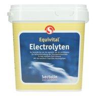 Sectolin Electrolytes 1kg