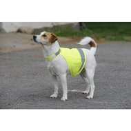 Bucas Dog Safety Hi-visibilty vest