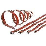 Ipts Halsband Rood