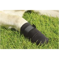 Beeztees Protective Shoes for Dogs Black