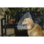 Beeztees Plastic Hondenkraag