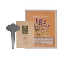 Esschert Zaadpakket Lavendel