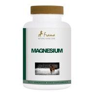 Frama Magnesium Forte 180st