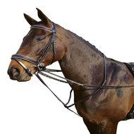 Harrys Horse Thiedeman Teugel Zwart