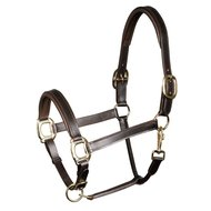 Harrys Horse Licol Padded Cuir Marron