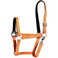 Harrys Horse Licol Padded Orange