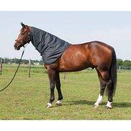Harrys Horse Thor Halsteil 600d Ebenholz