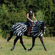 Bucas Fliegendecke Buzz-Off Riding Zebra L