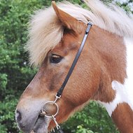 HKM Head Piece For Icelandic Horses Black