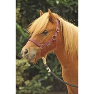 HKM Headcollar Red Mini Shetland