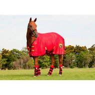 Agradi Horse Armor knockdown sheet (Insect shield) Yellow/Red