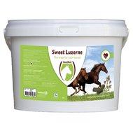 Excellent Sweet Luzerne 3kg