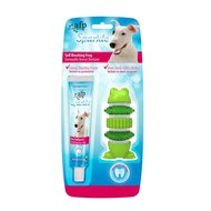 All For Paws Easy Brush Frog Sparkle