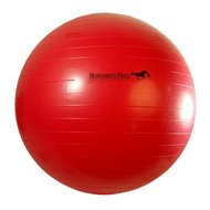 Jolly Ball Mega Ball Rot 65cm