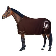 HV Polo Zweetdeken Cooler Dark Brown