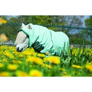 Rambo Sweet Itch Hoody Petite Ice Green