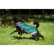 Rambo Waterproof Dog Rug 100g Green/Red