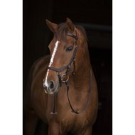 Rambo Micklem Competition Bridle Dark Havanna