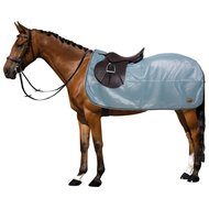 Global Anti-fly Exit Rug with a Cut-out Aqua Marine