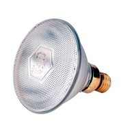 Philips Warmtelamp E 175w Wit