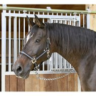 Kerbl Halster Mustang Verstelbaar Rood