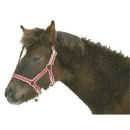 Kerbl Eurohorse Veulenhalster Exclusief Rood