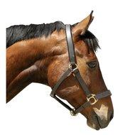 Kerbl Head-Collar Eco Brown