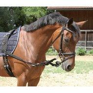 Kerbl Bijzetteugel Zwart Pony