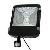 Kerbl LED-Außenstrahler mit Bewegungsmelder 100W