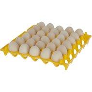Kerbl Eierhouder Kunststof 30 Eier