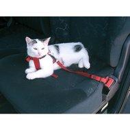 Autogordel Hond/Kat incl. Borst- Halsband