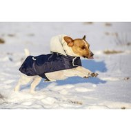 Kerbl Maxi Pet Hondendeken Teddy Navy/Blauw