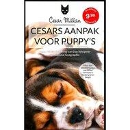 Cesars Aanpak voor Puppys