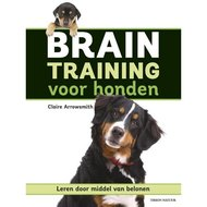 Braintraining voor Honden