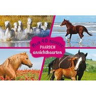 Mijn 40 Mooiste Paarden Ansichtkaarten