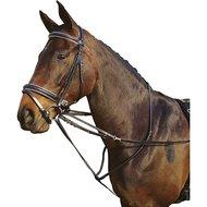 Harrys Horse Thiedeman Teugel