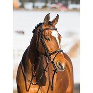 Horze Gironde Hoofdstel Zwart Pony